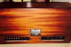 Trace Acoustic TA-200S 2
