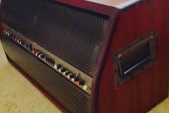 Trace Acoustic TA-200S 3