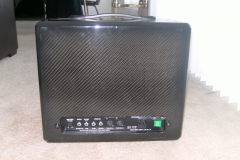 Trace Acoustic TA-100R (Rare Carbon Fiber Cabinet, Made For N.A.M.M. Show 2000) 2