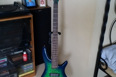 I banez 5 String Bass.